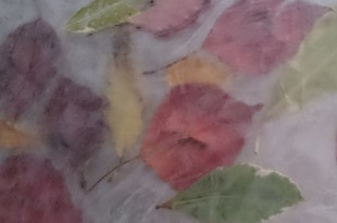 autumn leaves wax paper
