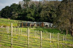 Best Family Friendly Mornington Peninsula Wineries