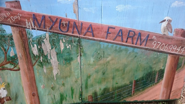 Photo of Visiting Myuna Farm