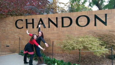 Photo of Domaine Chandon Winery Review – Yarra Valley Wineries