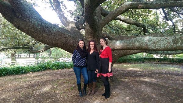 kellybrook winery tree