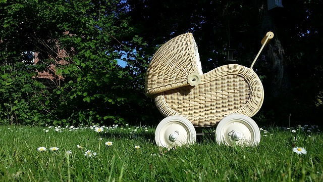 Photo of 5 Big Mistakes People Make When Choosing A Pram (And how to get the right pram for you)