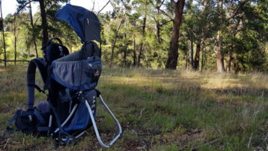 Photo of Panda Carrier Review (Includes Video Review)